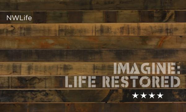 imagine life restored 2013 work