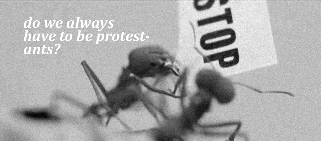 protest ants